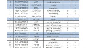 Spółki wchodzące w skład WIG30
