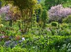 Tworzenie ogródów jako pomysł na biznes. Gra w zielone powinna się opłacić