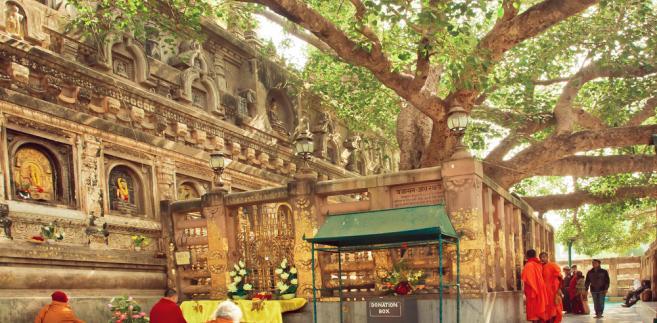 Indie: Bodh Gaja, gdzie narodził się buddyzm [REPORTAŻ]