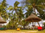 Egzotyka nie tylko w zimie: Gdzie warto pojechać latem?