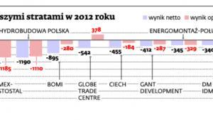 Spółki z największymi stratami w 2012 roku