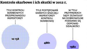 Kontrole skarbowe i ich skutki w 2013 r.