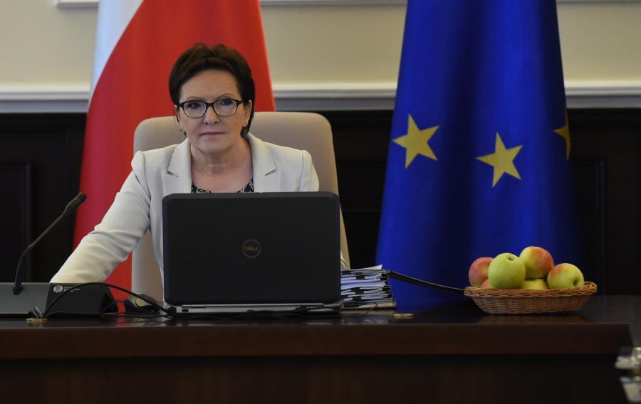 Premier Ewa Kopacz podczas posiedzenia Rady Ministrów,  PAP/Radek Pietruszka