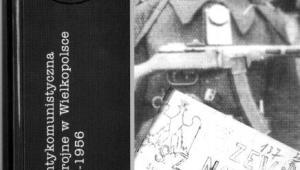 Konspiracja antykomunistyczna i podziemie zbrojne w Wielkopolsce w latach 1945-1956