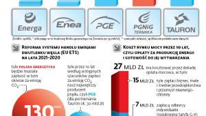 W Polsce źródła odnawialne wciąż nie mają znaczenia strategicznego