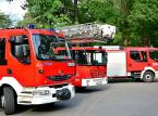Polscy strażacy będą w Szwecji tak długo, jak długo będą potrzebni