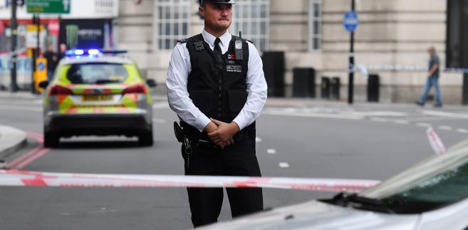 Około 7.30 rano czasu lokalnego (8.30 w Polsce) rozpędzony samochód wjechał w bariery bezpieczeństwa postawione przed budynkiem brytyjskiego parlamentu w dzielnicy Westminster, w pobliżu wejścia dla gości. Policja zatrzymała na miejscu zdarzenia czarnoskórego mężczyznę, który kierował pojazdem.