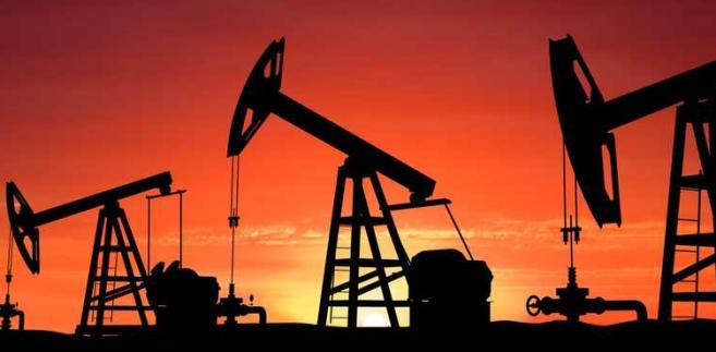 Baryłka ropy West Texas Intermediate w dostawach na listopad na giełdzie paliw NYMEX w Nowym Jorku jest wyceniana po 50,98 USD, po zwyżce o 19 centów.