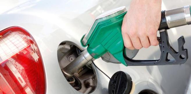 Mniejszy udział biokomponentów z surowców rolniczych uderzy w plantatorów rzepaku, gorzelnie i tłocznie oleju