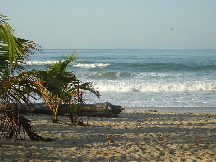 Santa Teresa, Kostaryka. Fot.flickr/Desobry23