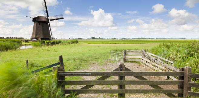 Praktycznych Holendrów, jak wynika z sondażu przeprowadzonego w zeszłym tygodniu, najbardziej interesuje gospodarka, ochrona zdrowia i zabezpieczenia społeczne.
